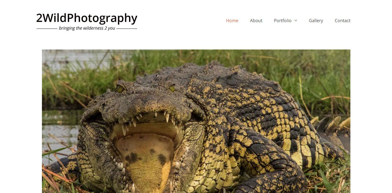 WordPress Website Design | Jennifer Franklin Portfolio | Photography Website Design | Jennifer-Franklin.com