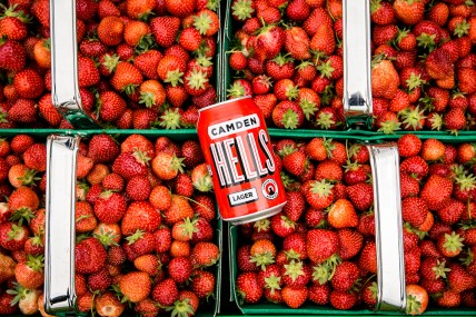 08_strawberry_hells_forever_015