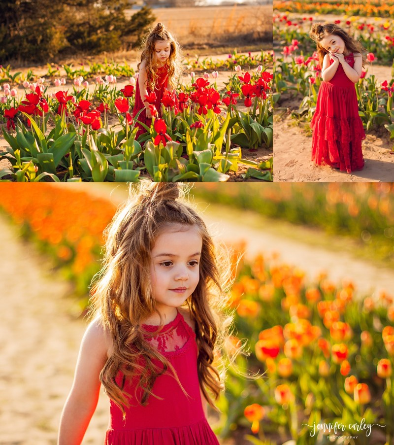 Texas Tulips Texas Tulips North Dallas Family Photographer