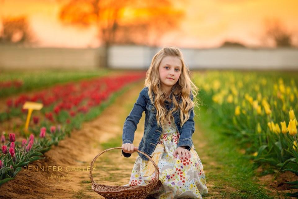https://www.wildflower.org/texas, wildflowers, tulips