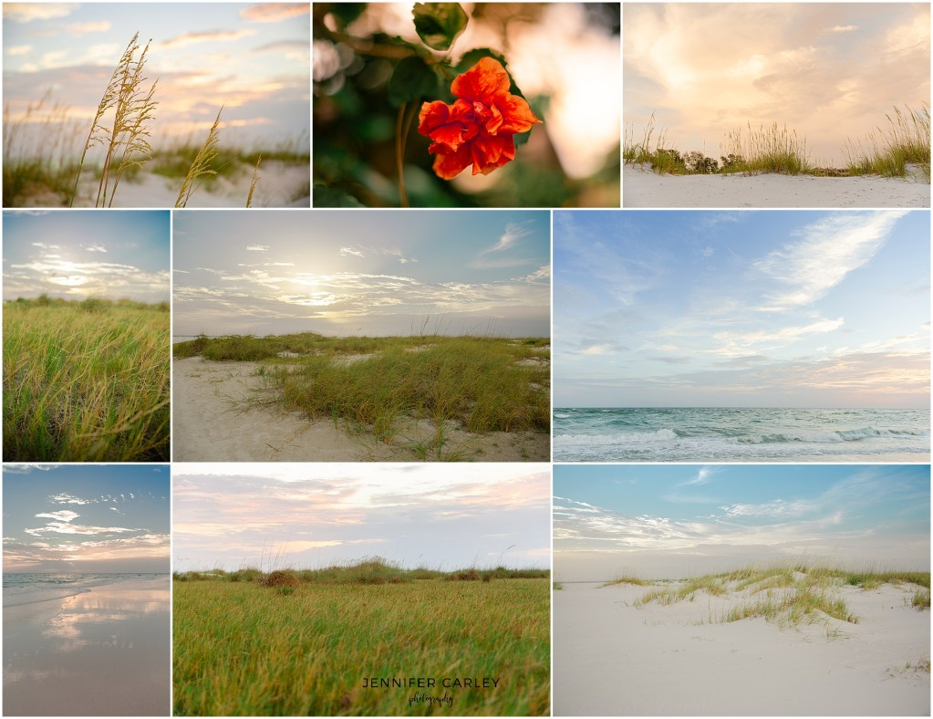 florida coquina beach photographer dfw photographer Tampa, Sarasota, Bradenton, St. Pete