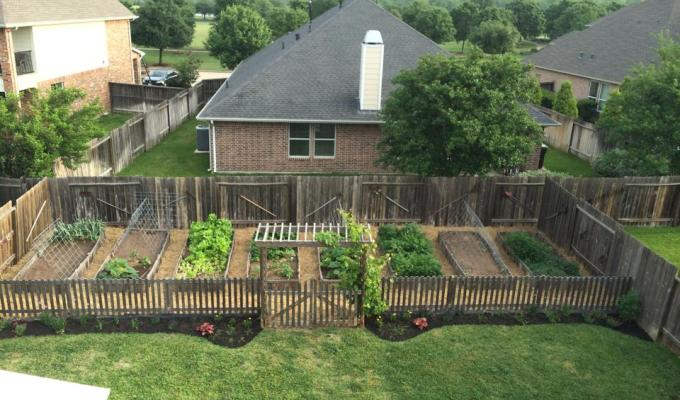 10 Steps To Start an Organic Garden