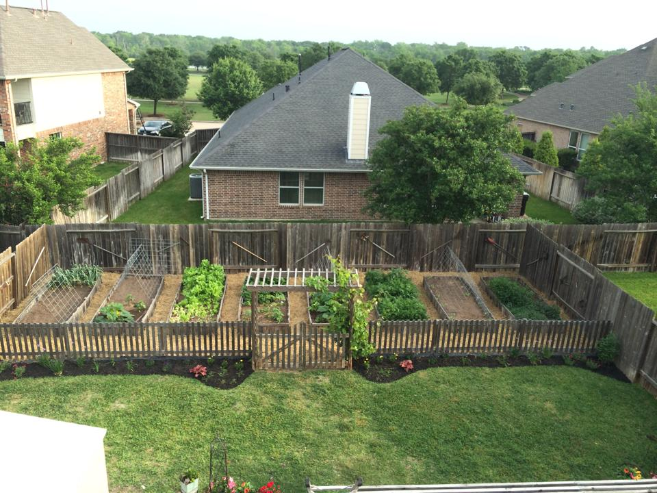 You May Have Been Inspired To Start A Vegetable Garden, But Just Donu0027t Know  Where To Start. If You Think Your Yard Is Too Small, Youu0027d Be Surprised How  Much ...