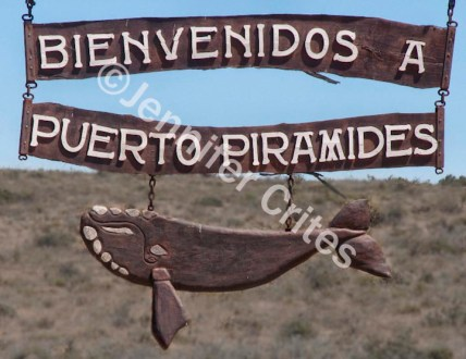 Welcome to Puerto Piramides