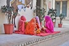 Udaipur city palace 691