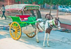 Horse and cart outside Taj Mahal