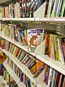 YA Fiction Shelf