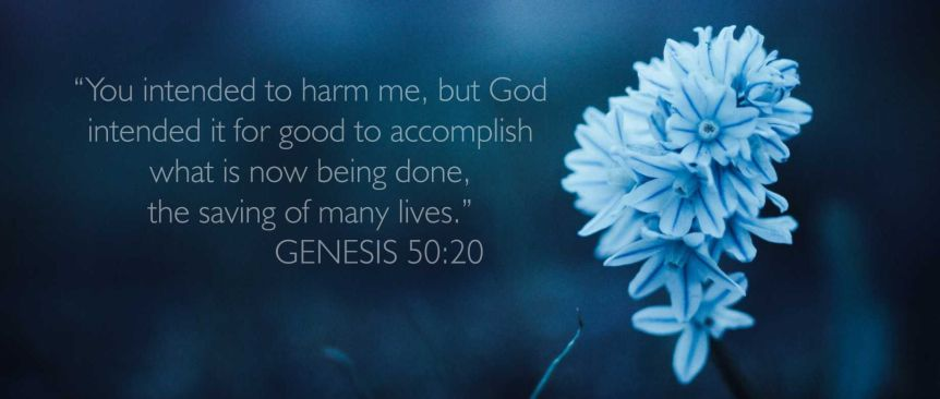 Genesis 50:20 NIV