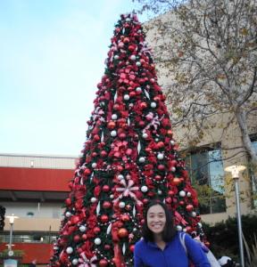 Christmas tree and me