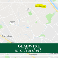 "Gladwyne is part of the Main Line, but off the beaten path and a great option for people looking for a ""throwback"" kind of lifestyle."