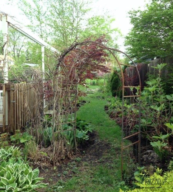 Garden path early spring