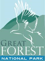 Great Forest National Park 2