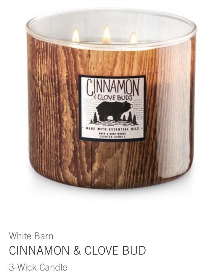 cinnamon & clove buds
