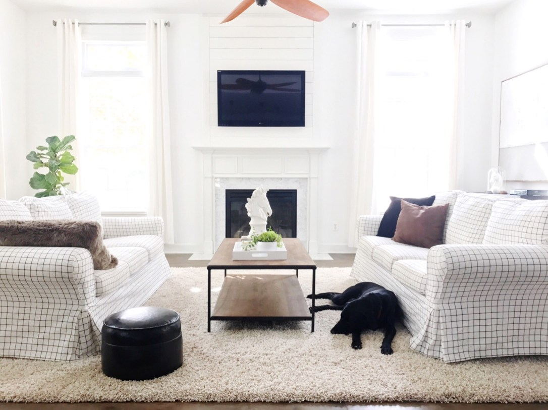 Olive and Ford living room