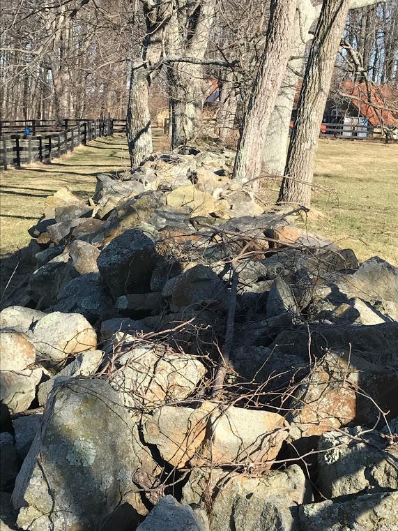 Joubran Farm - stone wall