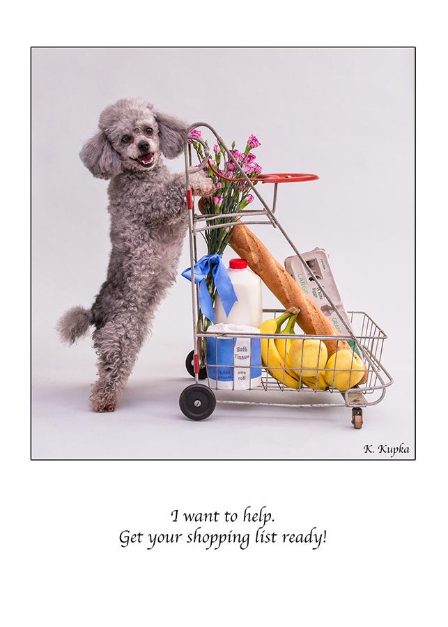 Beholder_Kupka_Tiffany cart