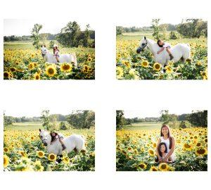 family photography richmond va