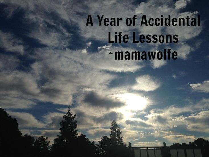 A Year of Accidental Life Lessons