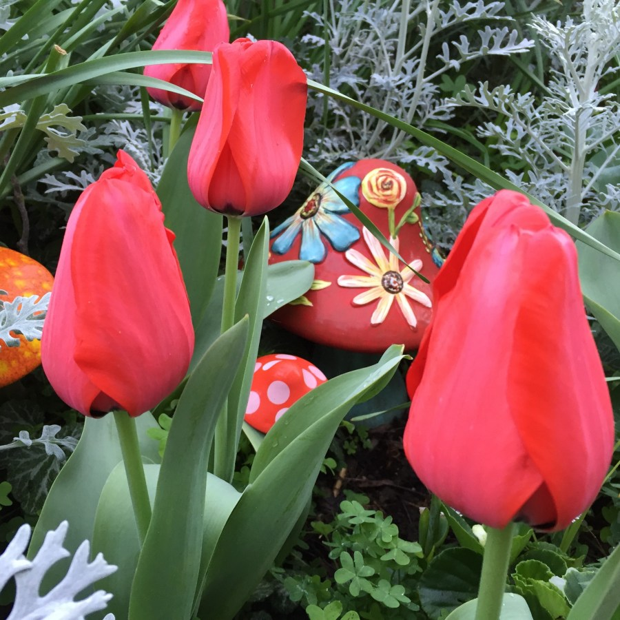 One thing you shouldn't miss- spring flowers in your garden.