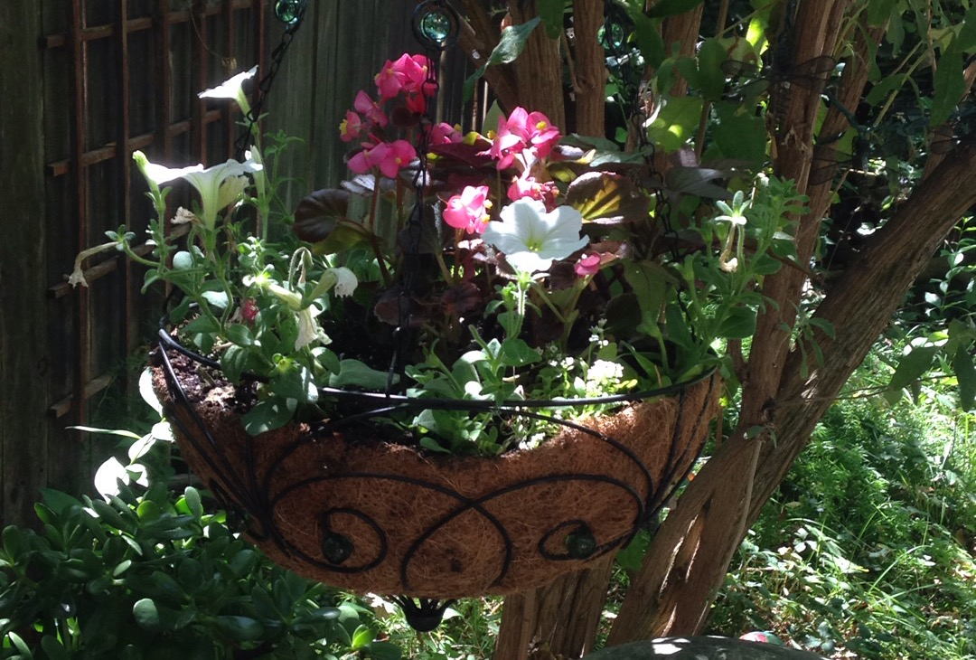 making your garden your sanctuary