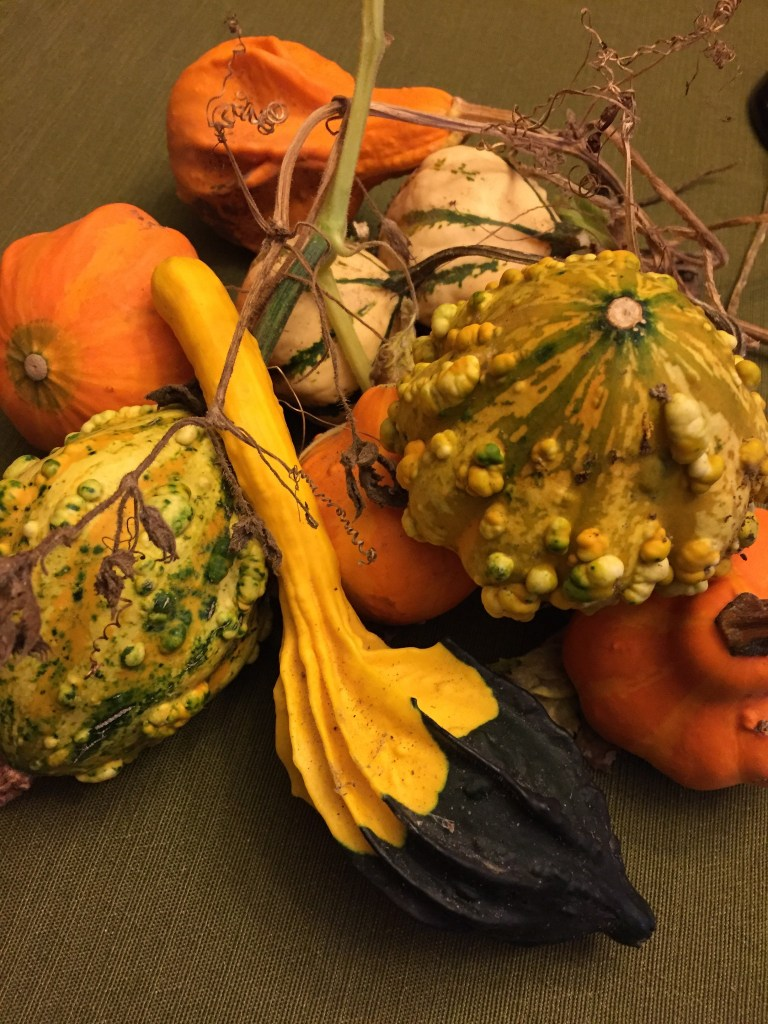 Inside The Mind of a Teacher-Mom: Poetry by Kaveri Patel pumpkin