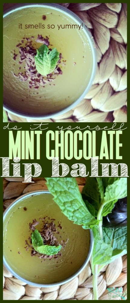 Mint Chocolate Chip Lip Balm
