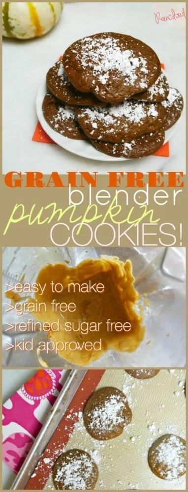 Blender Grain Free Pumpkin Cookies
