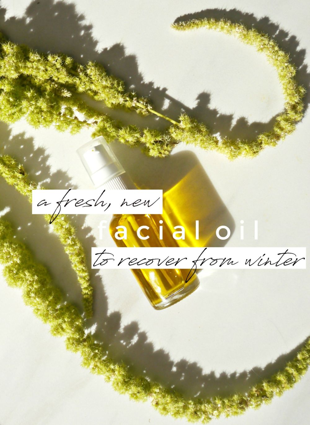 DIY Facial Oil