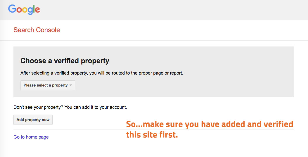 google verify property