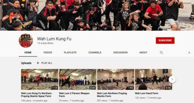 wah lum kung fu video