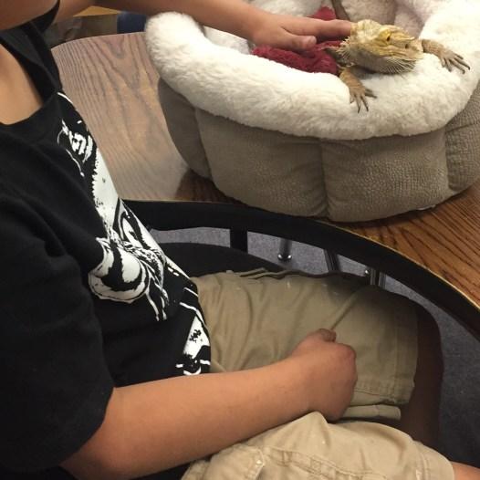 Dino and a 4th grader