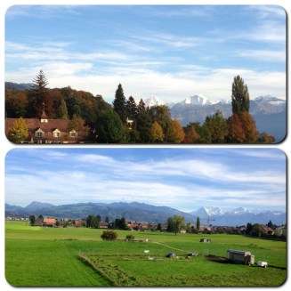 My views from the train on my way to Thun