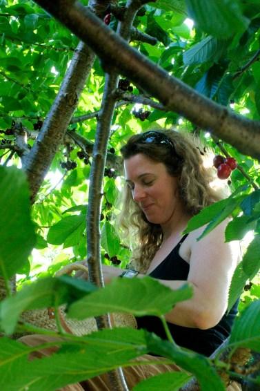 Jen the cherry picker