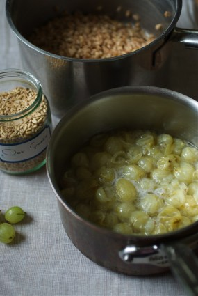 Oat groats and gooseberries