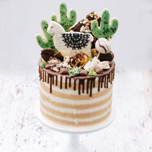 MAX Cakes
