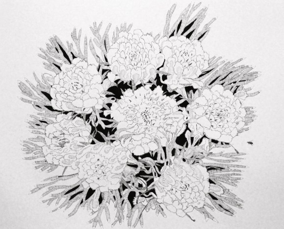 pic of flower drawing 002