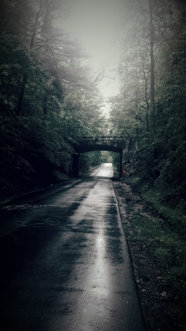 Crawford Road bridge-Yorktown, Virginia…Haunted?