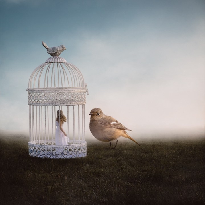 cage:haiku