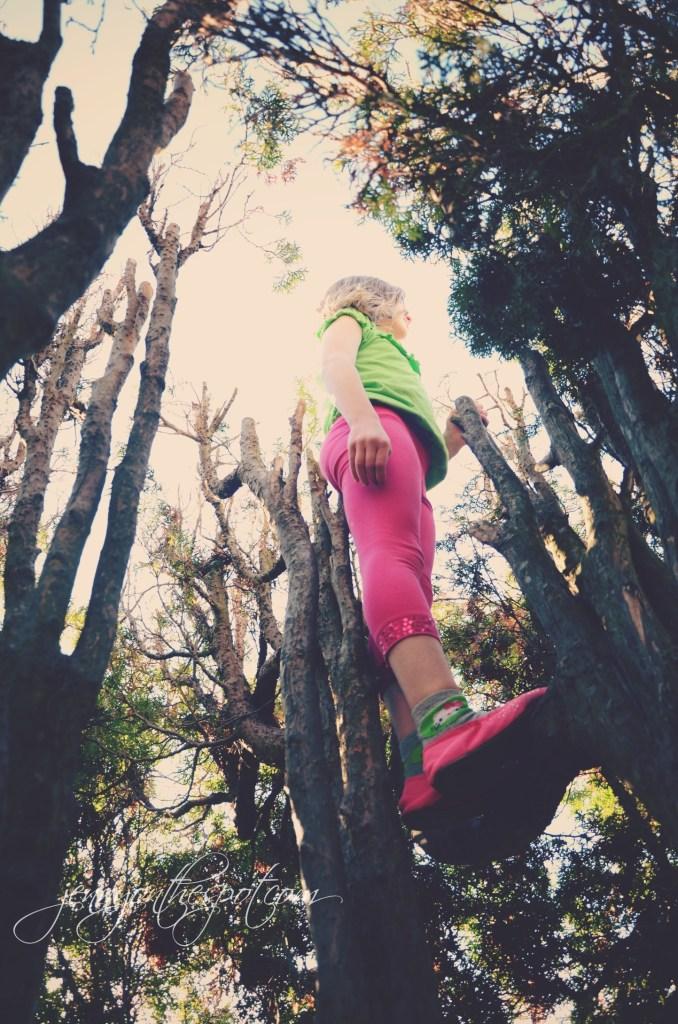 lucy up a tree via @jennyonthespot