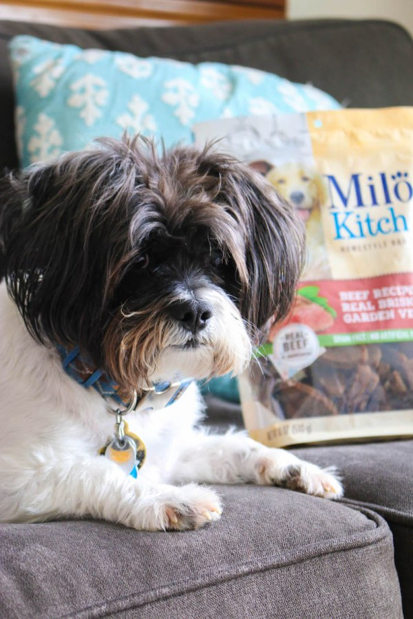 Milo's Kitchen Homestyle Dog Treats 1