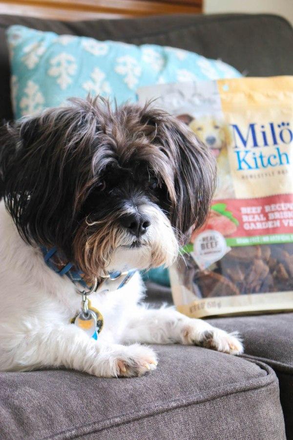 Milo's Kitchen Homestyle Dog Treats 1