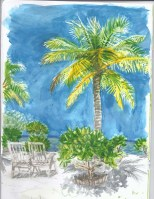 jenny robins - watercolour - maldives