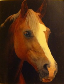 My beautiful girl - much missed x