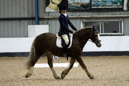 Competing at our last dressage event, only a few days before she fell ill. She won her first class and came 4th in the next.