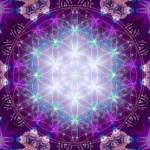 Navigating the New Energies