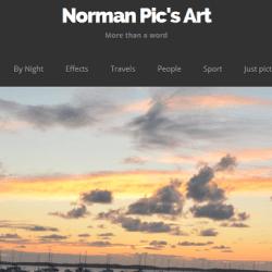 Création site Norman Pic's art