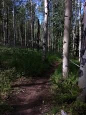 Granby, CO Trail Run