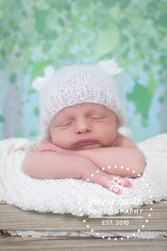 Newbornin100acrewoods