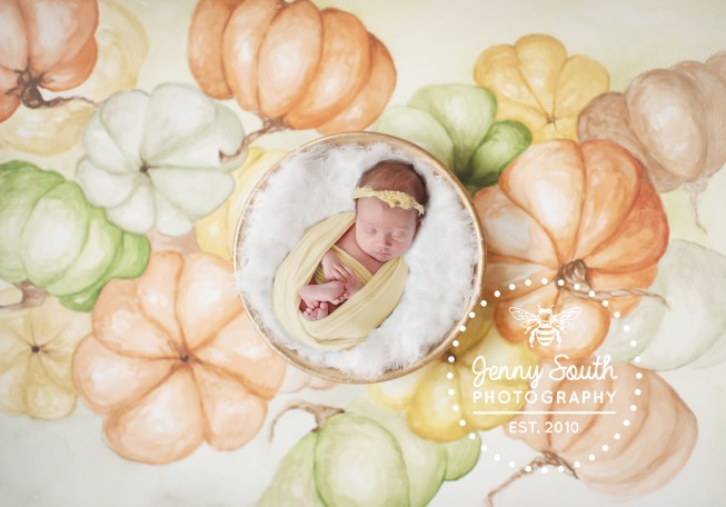 A baby girl sleeps soundly in a gold posing bowl against a hand painted water colour backdrop of seasonal pumpkins