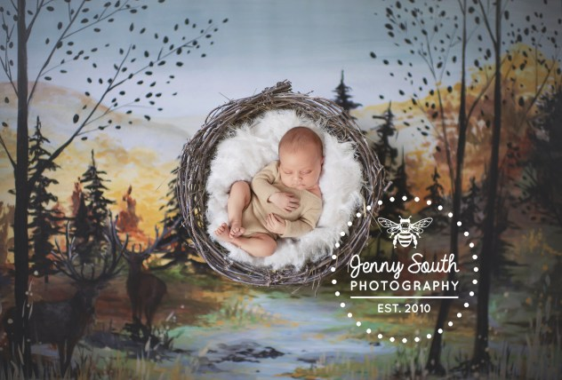 A handprinted backdrop od an autumnal scene surrounds a sleeping newborn baby in a nest.